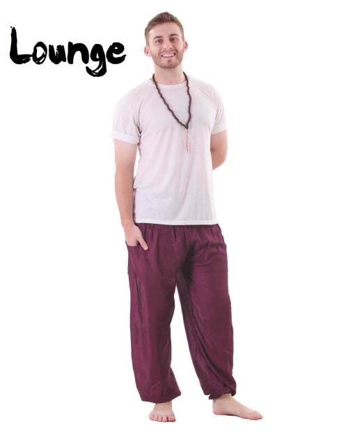 Harem Genie Pants in Purple for Men - front