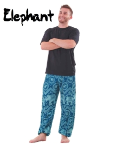 Harem Thai Elephant Pants in Teal for Men - front
